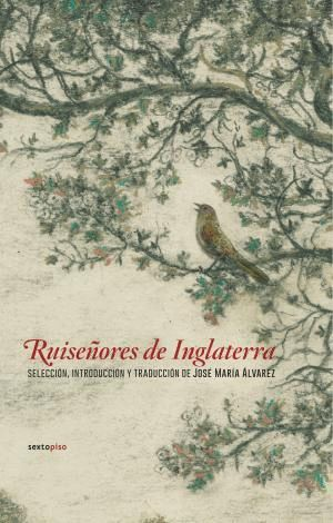 RUISEÑORES DE INGLATERRA