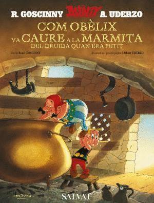COM OBÈLIX VA CAURE A LA MARMITA DEL DRUIDA QUAN ERA PETIT