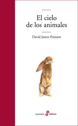EL CIELO DE LOS ANIMALES