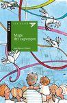 MAGS DEL CAPVESPRE