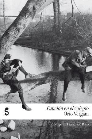 FUNCIÓN EN EL COLEGIO