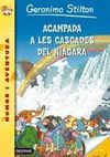 ACAMPADA A LES CASCADES DEL NIÀGARA
